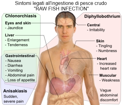 Giardia gatto sintomi. Giardia gatto sintomi Antihelmintic 1 an