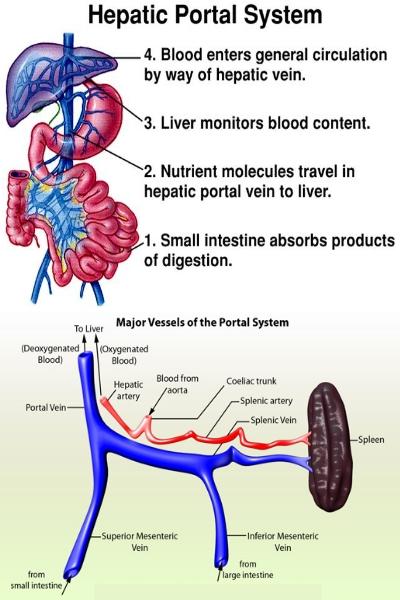 Láser la desaparición de los asteriscos vasculares